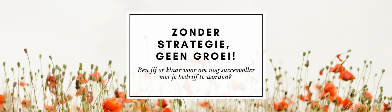 Zonder strategie, geen groei